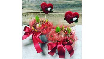 Купить цветы на День Всех влюбленных