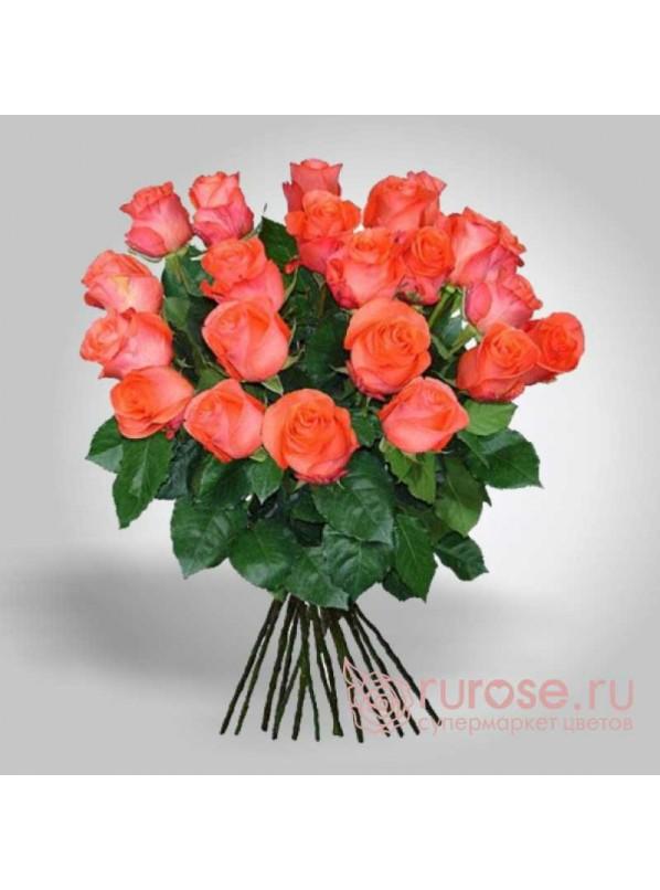 Монобукет из 21 коралловых роз