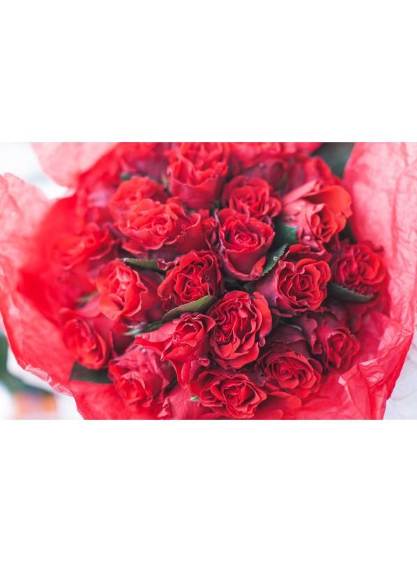 Монобукет из 25 пионовидных красных роз