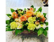 Купить Композицию из цветов и горшечных растений